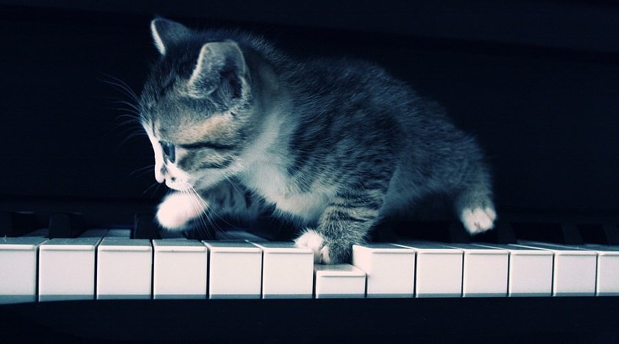 фортепиано, уход, правила, музыка